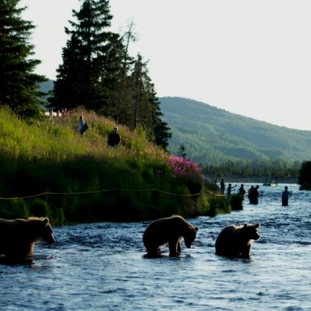 Pin by jackson crowson on alaska go there its sooo for Russian river fishing