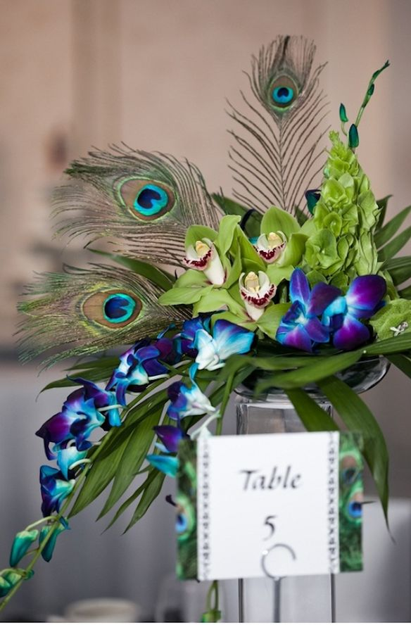 Peacock centerpiece bride ideas favorites peacocks
