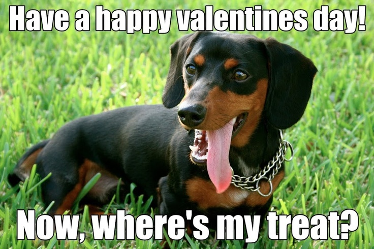 have a happy valentine's day in french