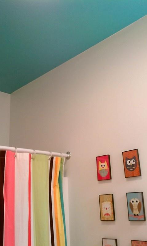 Bathroom - painted ceiling/white walls