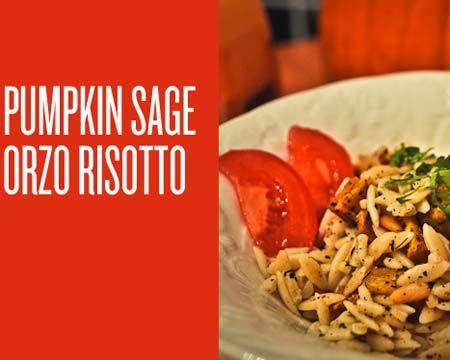 Pumpkin Sage Orzo Risotto Recipe | Fall Recipes | Pinterest