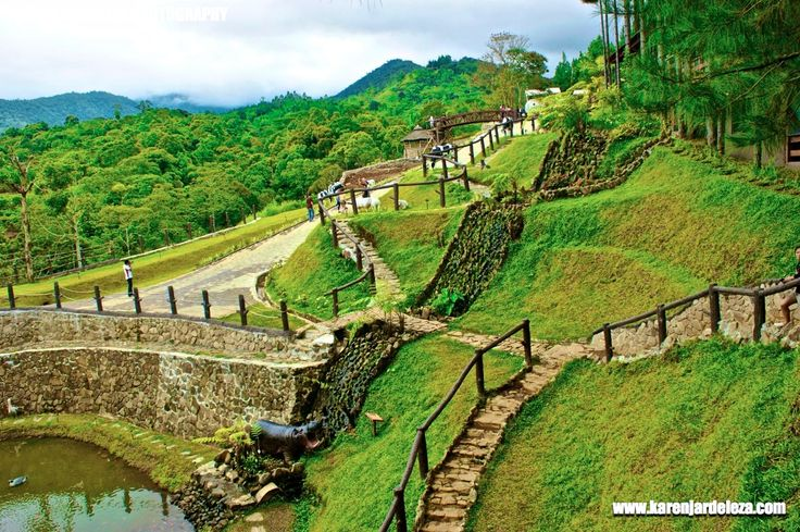Bukidnon Philippines  City new picture : Forest Park Bukidnon, | Philippines | Pinterest