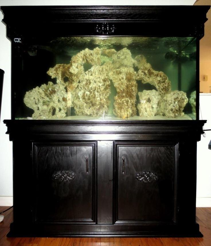 Saltwater fish for 90 gallon tank my 90 gallon reef tank for 90 gallon fish tank dimensions