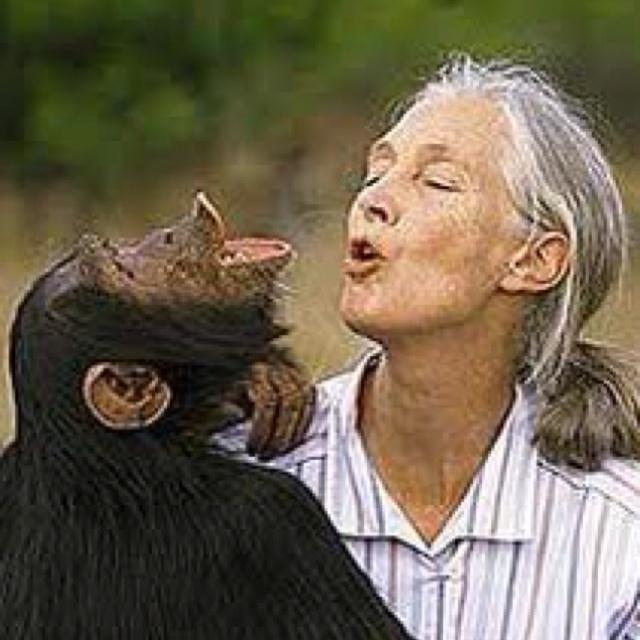 Jane Goodall - ... Jane Goodall Death
