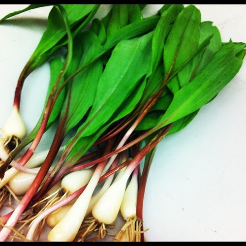 Ramps (wild leeks) | The Simple Beauty of the Veg & Fruit... | Pinter ...