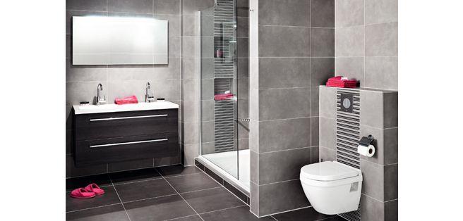 Badkamer met douche en toilet digtotaal - Kleine doucheruimte ...
