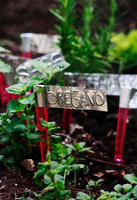 Plant markers from aluminum tape.