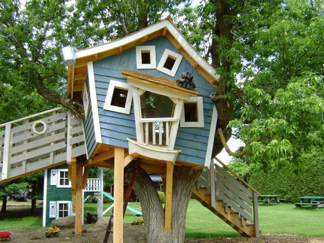 Dogs Tree House My And Puppies Dog Room Ideas