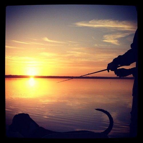 Good morning world :) | Fishing | Pinterest
