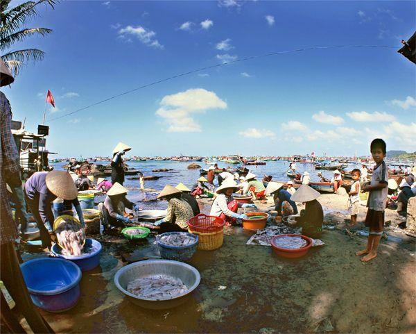 Chợ có mặt hàng chủ yếu là Hải Sản