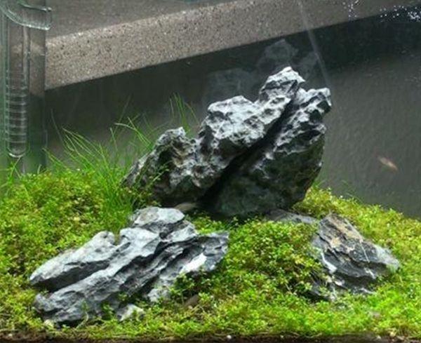Hardscaping your aquarium aquarium aquascaping pinterest for Landscaping rocks for aquarium