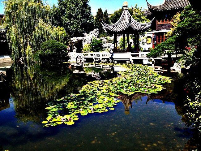 Lan Su Chinese Garden Portland Oregon Portland Pinterest