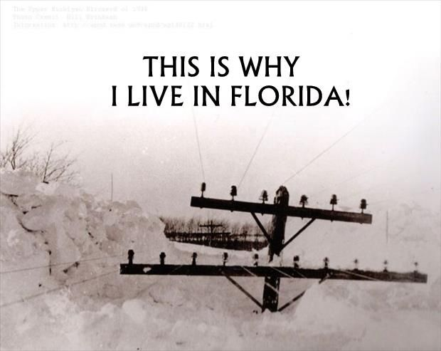 Meme this is why i live in florida someday we 39 ll live for Why live in florida