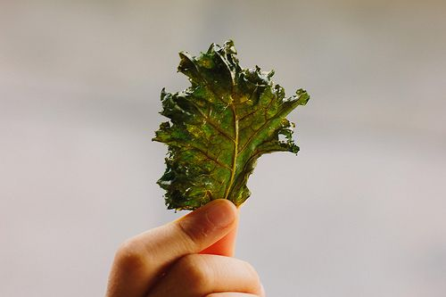 Kale Chips With Lemon And Ginger From 'Salty Snacks' Recipes ...