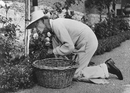 Hermann Hesse as a gardener