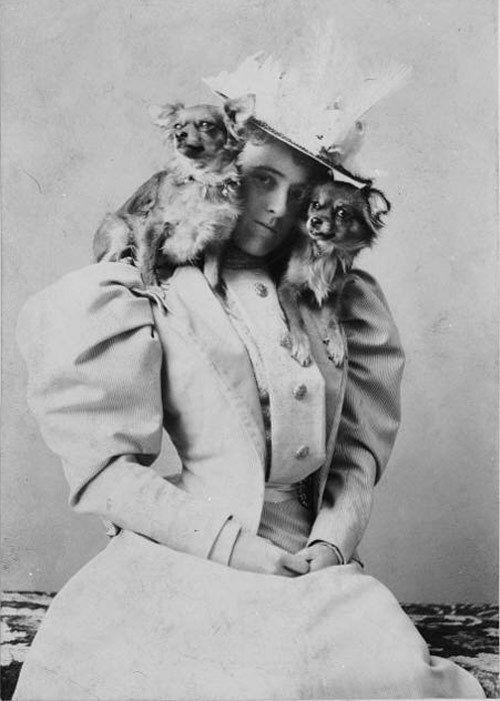 """Edith Wharton dupla kölykök.  """"Az én kis kutya - egy pillanat alatt a lábam."""""""