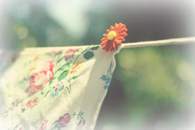 the clothesline - Explored Thank you !!