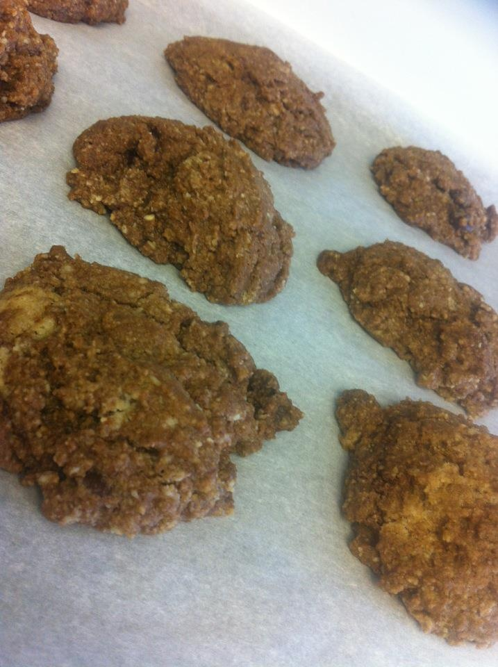 Paleo Chocolate Chip Cookies | Being Healthy is Living Paleo | Pinter ...