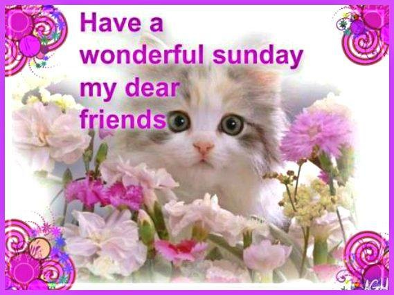 Image result for Have a Wonderful Sunday