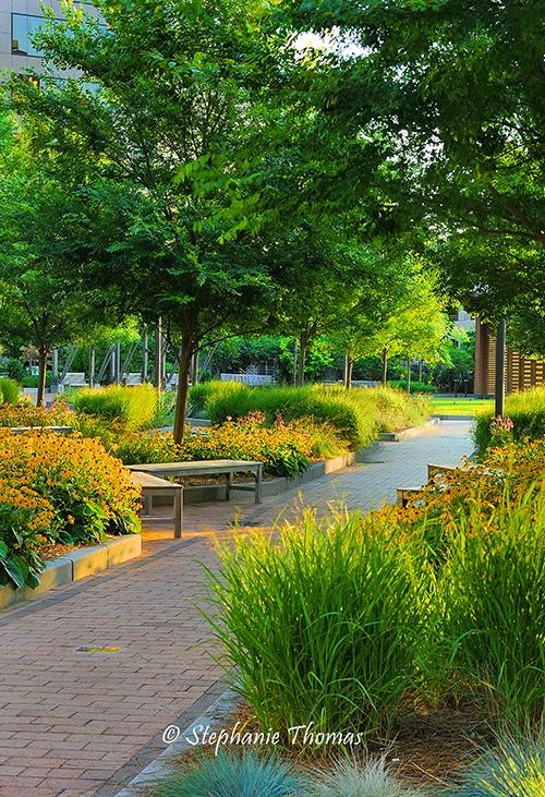 New Garden Landscaping Greensboro : New garden landscaping greensboro nc photograph designing