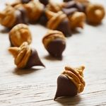The 36th AVENUE | Chocolate Peanut Butter Acorns | The 36th AVENUE