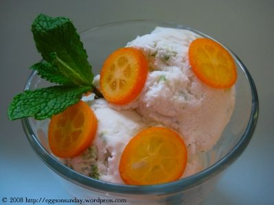 Coconut milk ice cream with lime and ginger