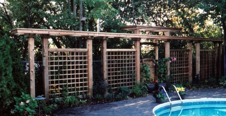 Screen By Pool To Help Create Privacy New Home Ideas