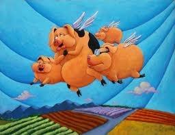 my piggies
