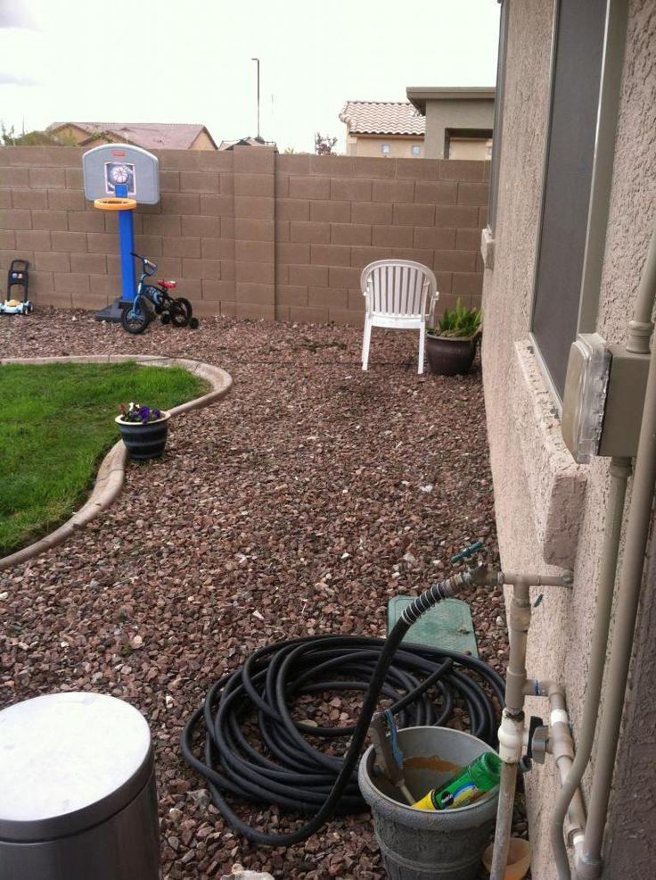 Backyard Designs For Dogs : Dog Yard Landscaping  This wall is on the south side of the yard so