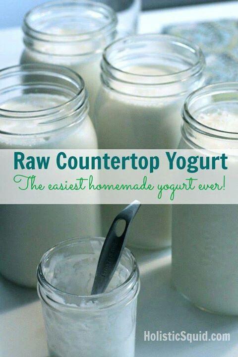 Make your own yogurt | cooking | Pinterest
