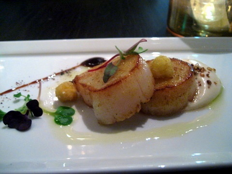 Gordon ramsay scallops recipe gordon ramsey recipes pinterest