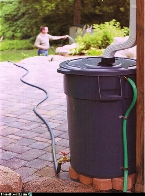 Rain Barrel And Irrigation System Gardening Pinterest