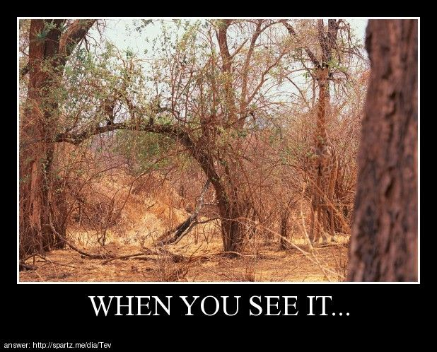 Posters - when you see...