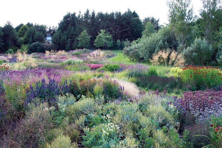 Piet oudolf 39 s new garden book plantings for Piet oudolf private garden