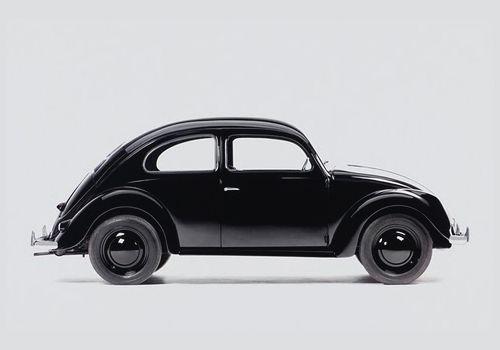 very black beetle