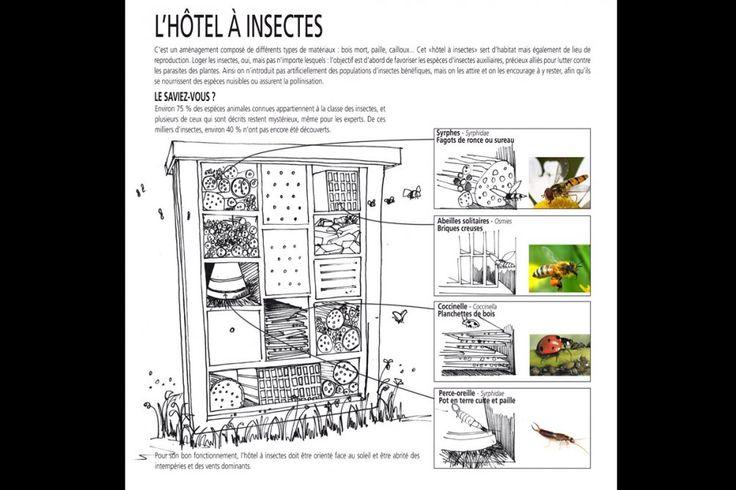 h tel insectes jardin garden pinterest. Black Bedroom Furniture Sets. Home Design Ideas