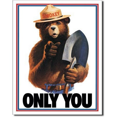 Only you can prevent fires