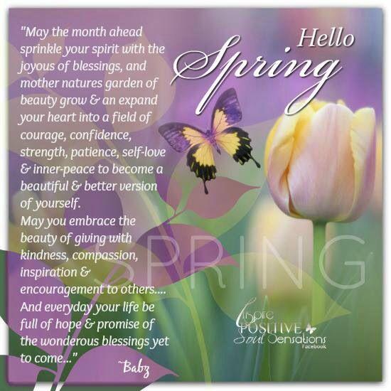 Hello Spring      Dail...