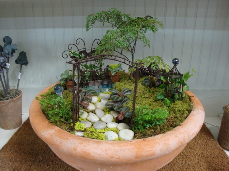 our new dish garden creation dish garden insperations
