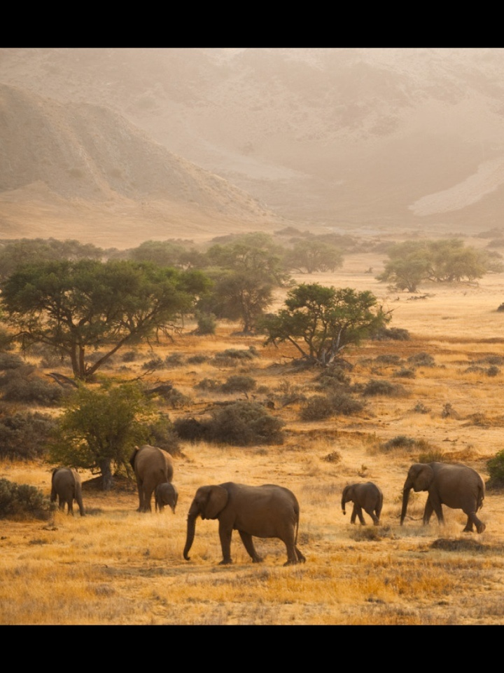 South africa wonderful landscape out of africa pinterest for Landscape sa
