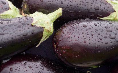 Mediterranean Eggplant Delight (video)
