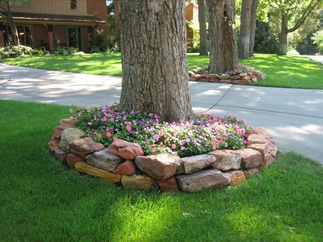 Pinterest for Tree landscaping ideas