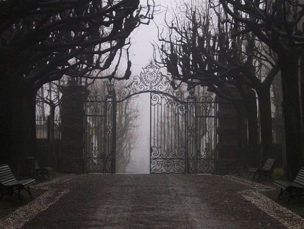 Old cemetery gates | Cemetery | Pinterest