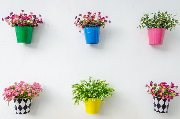 Vasos de flores na parede. Decoração de primavera. Vasos coloridos. Ideias para decorar a casa. Plantas e natureza. Frescor. Decoração de ja...