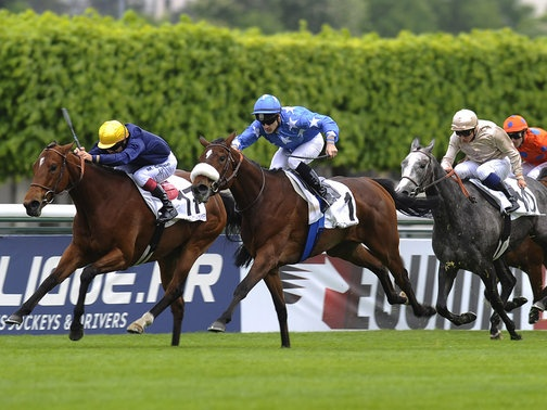 french 1000 guineas odds