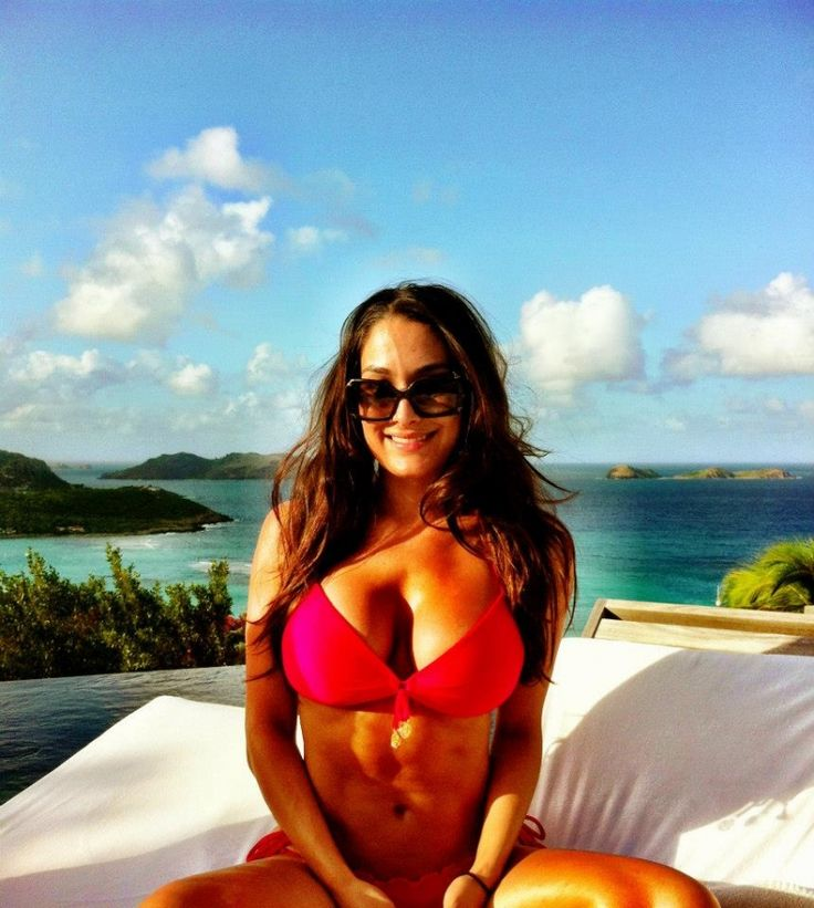 nikki bella | Bella Twins Nikki and Brie WWE Divas | Pinterest