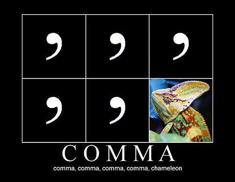 comma comma chameleon...