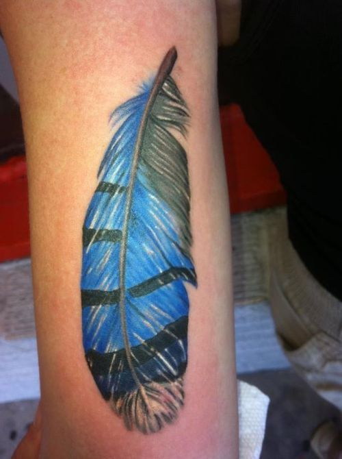 blue jay feather tattoo cardinals blue jays pinterest. Black Bedroom Furniture Sets. Home Design Ideas