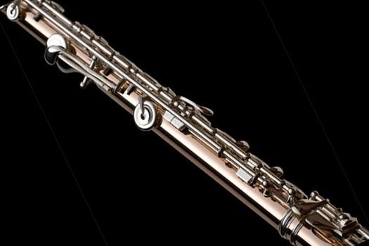Powell flutes