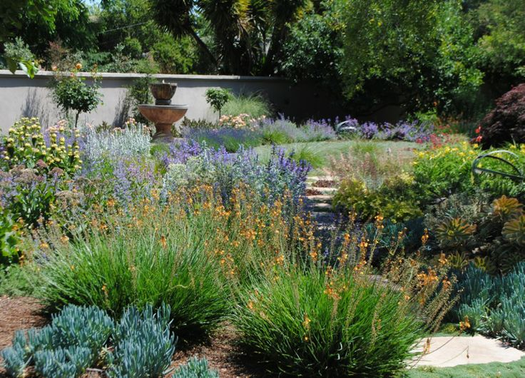 Pin by nancy ewald on texas landscape ideas pinterest for Country landscaping ideas
